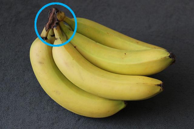 banana-325461_640