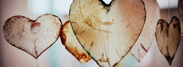 heart-635667_640
