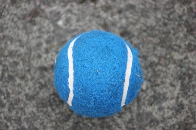 tennis-ball-71119_640