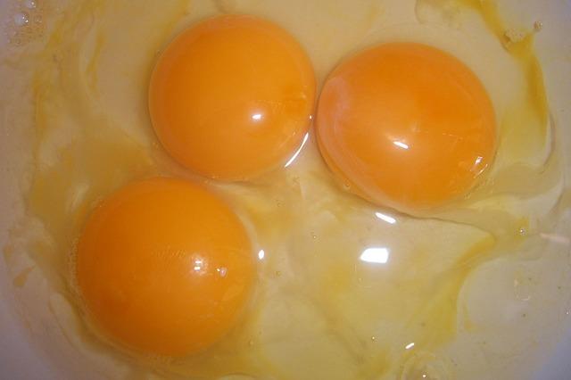 eggs-14177_640