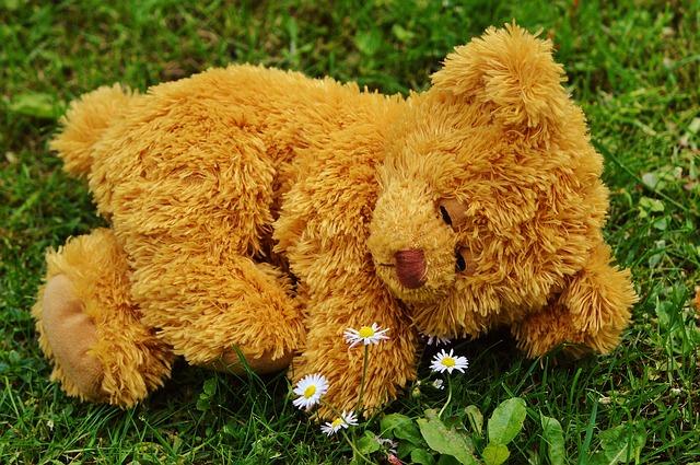 teddy-bear-792279_640