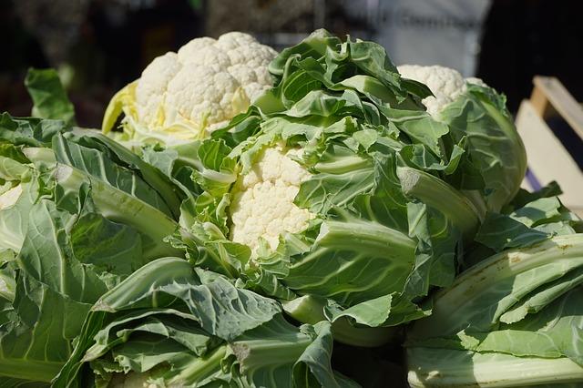 cauliflower-318209_640