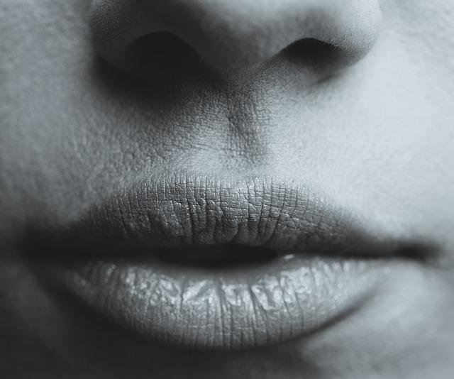 lips-839236_640