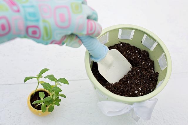 planting-783342_640