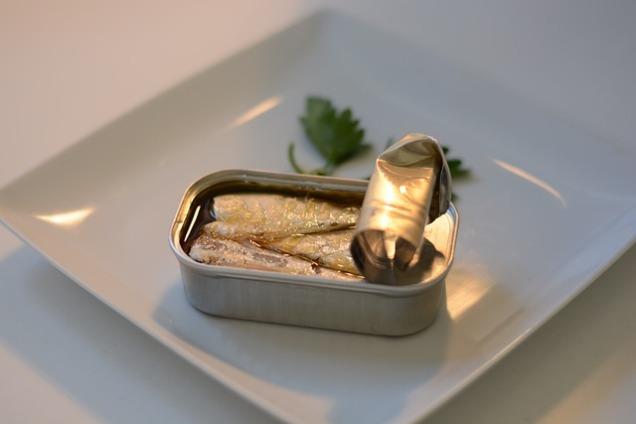 sardines-825606_640