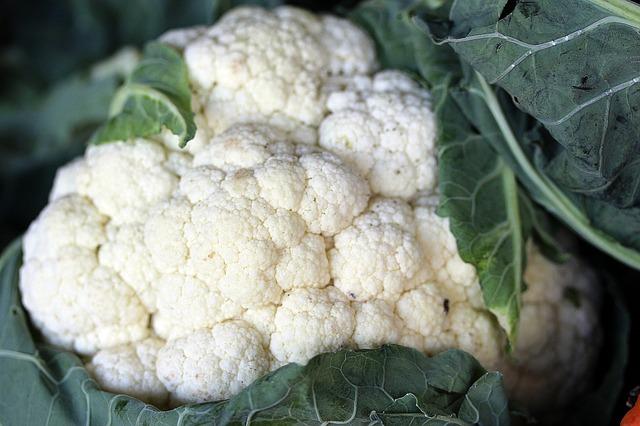 cauliflower-613618_640