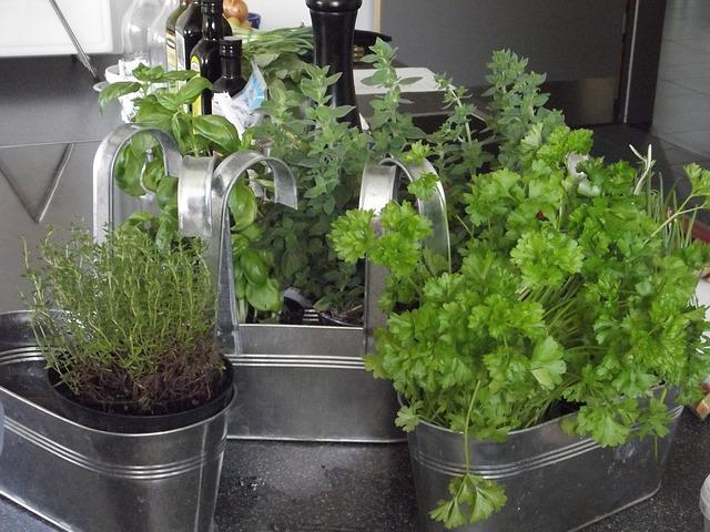 herbs-167725_640