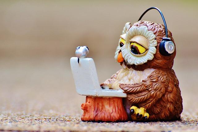 owl-947768_640