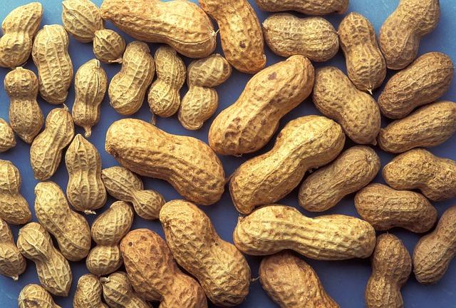 peanuts-815565_640