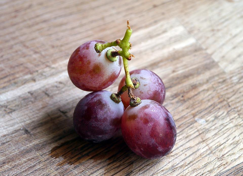 grapes-498680_960_720