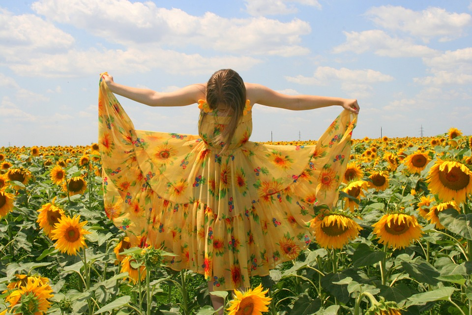 sunflower-834987_960_720