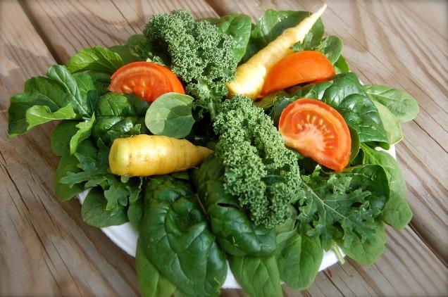 salad-1179314_960_720