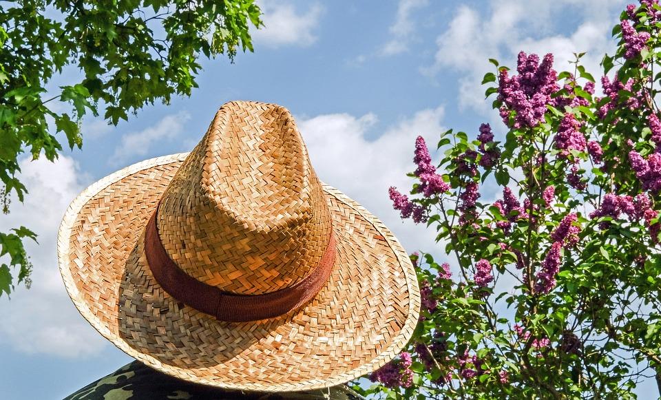 hat-1379590_960_720